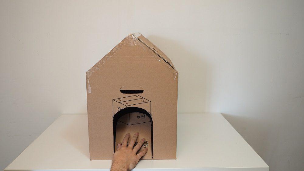 Kartonsan kedi, köpek kulübesi girişi.