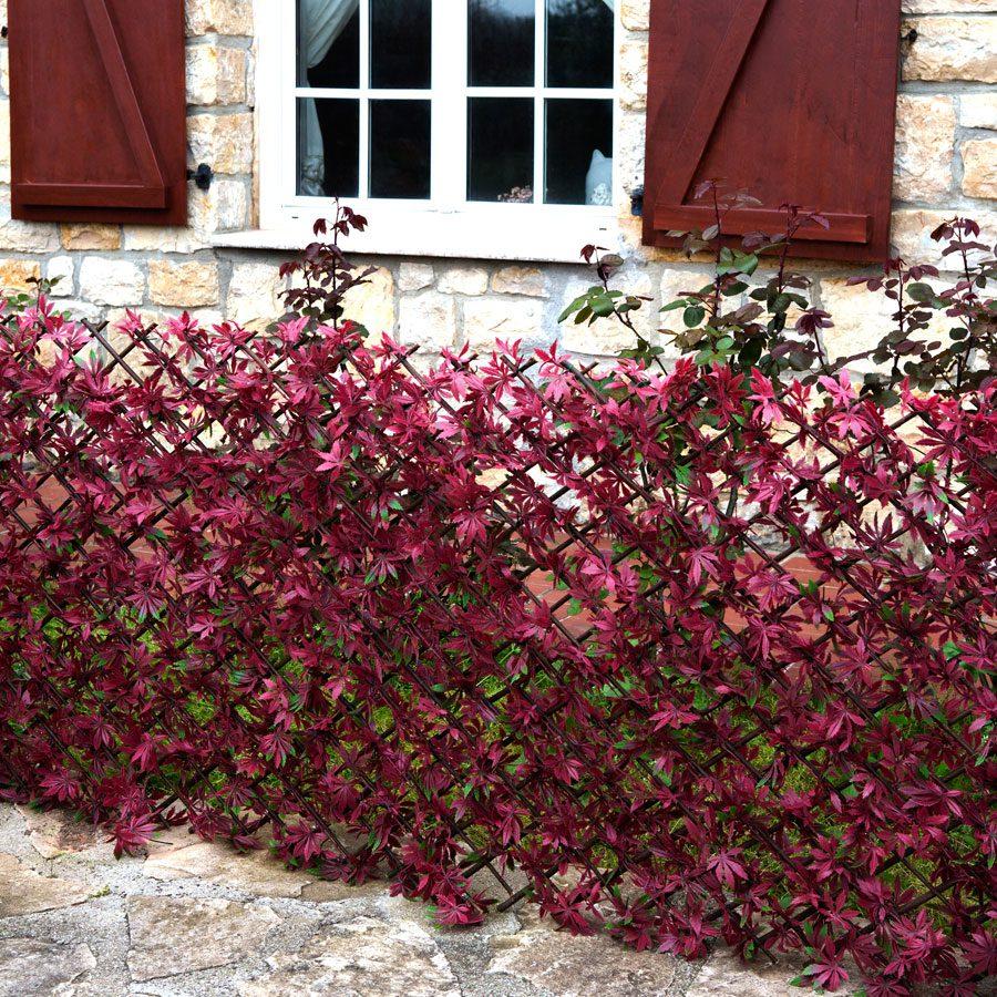 Bahçe duvarı.