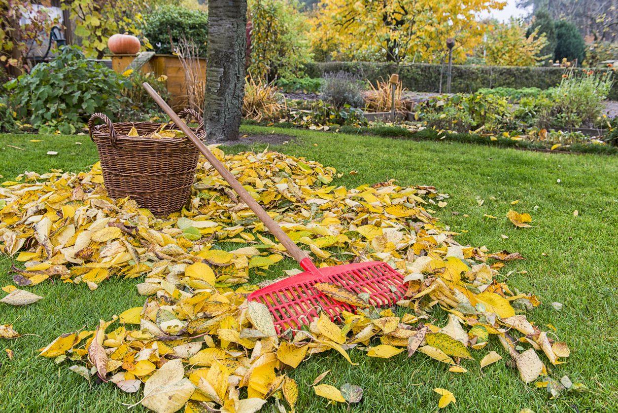 Sonbahar temizliği için pratik yöntemler