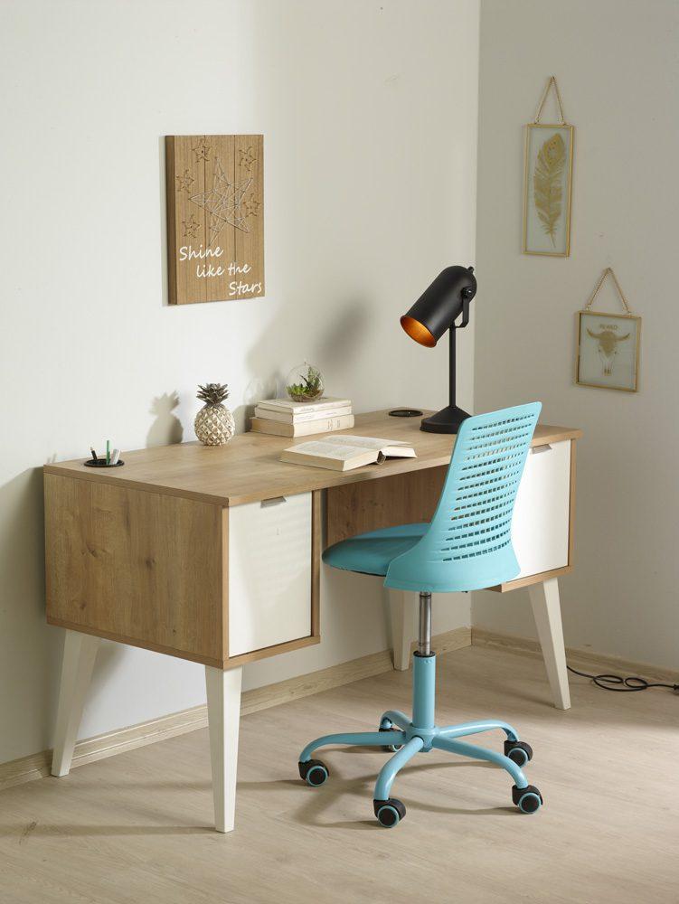 Çalışma odası nasıl düzenli olur?