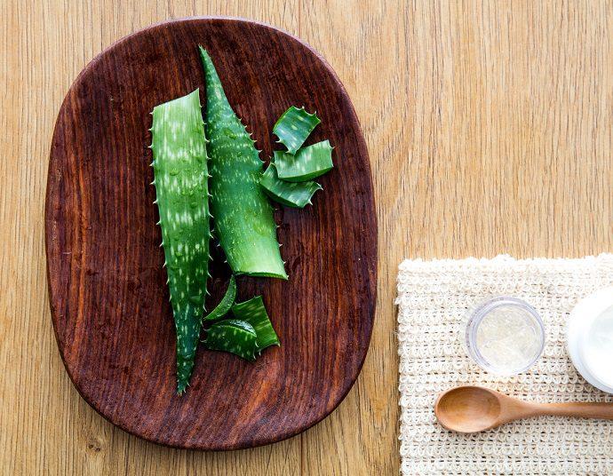 Aloe veranın cilde faydaları