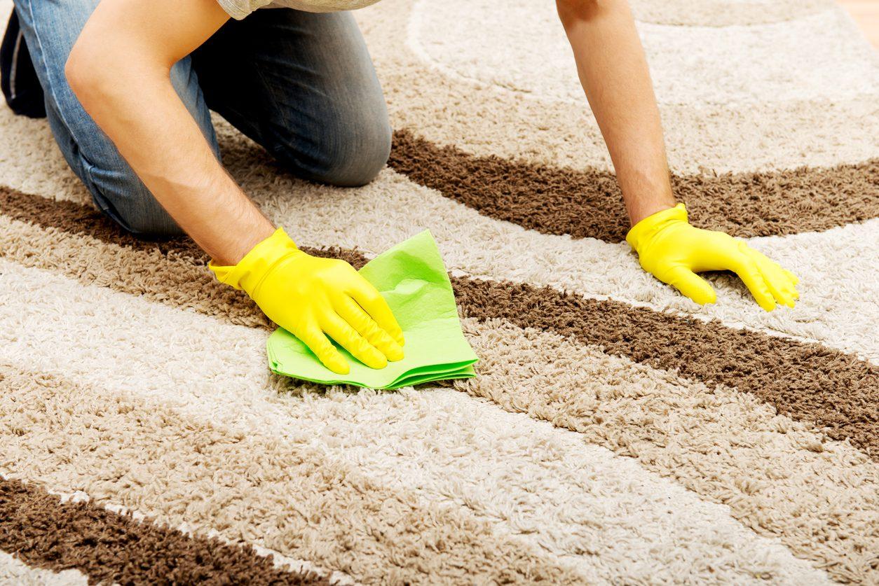 Evde Halı Temizliği