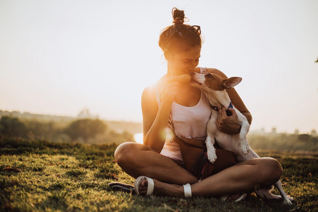 Yazın Evcil Hayvan Bakım Önerileri