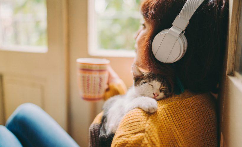 Kediyi Yeni Eve Alıştırmak İçin İpuçları