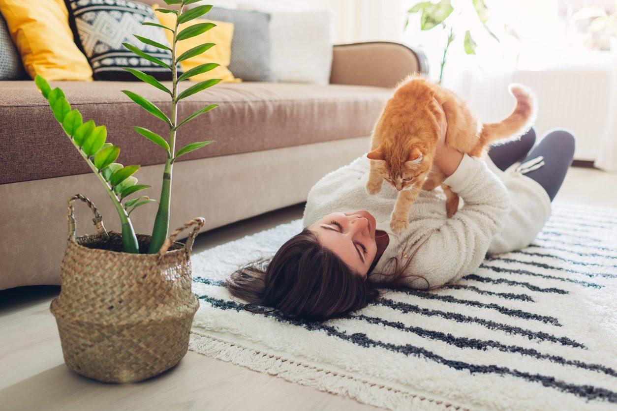 Evcil Hayvan İçin Ev Güvenliği