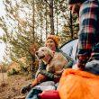 Evcil Hayvanla Kampa Gideceklere Öneriler
