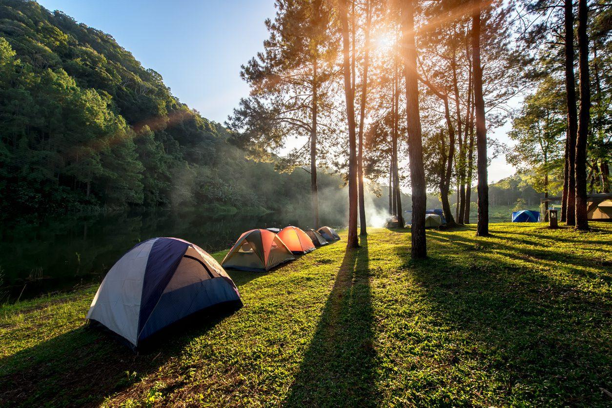 Kamp Kuralları