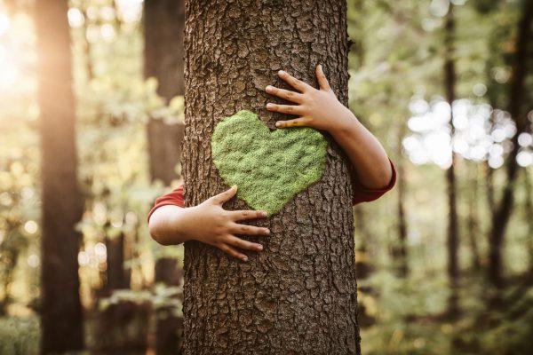 Doğayı Korumak İçin Yapılması Gerekenler